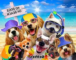 JGR Copa No Dogs On The Beach Selfie Yorkie Golden Lab Pug S