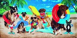 Bahia Collection by Dohler Dogs at the Beach Velour Brazilia