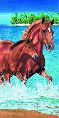 Bahia Collection by Dohler Horses in The Water Velour Brazil