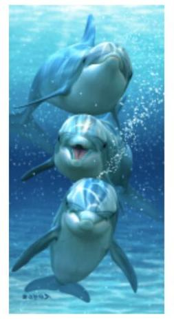three dolphins beach towel 30 x 60